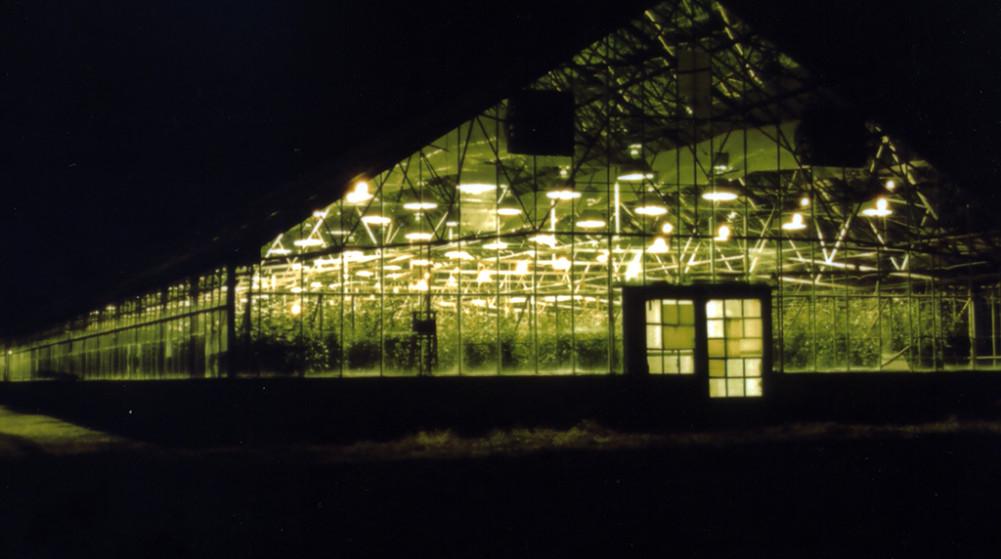 Commercial-Greenhouse Capita-Medicine Hatl-S477